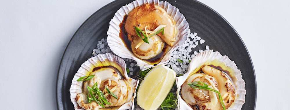 Scallops in Shells